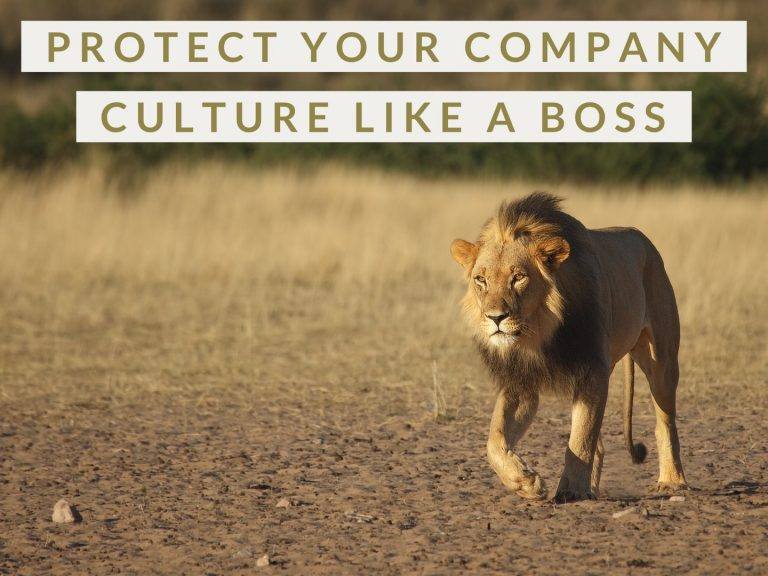 Leadership Lessons: Protecting Your Culture