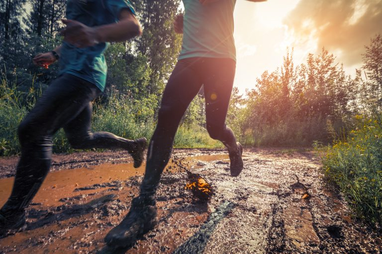 Finding Our Way Back to Wellness